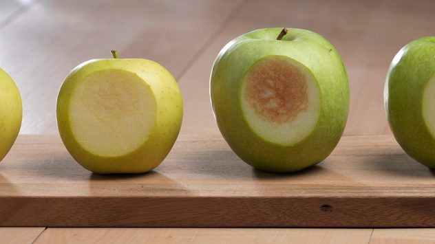 Arctic Apple and GMOs | AGDAILY