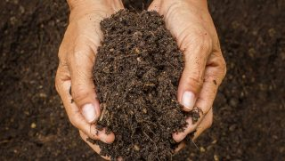 soil health benefits