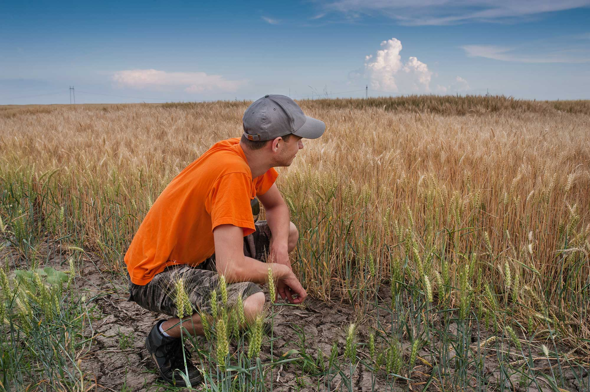 Poll shows Americans' unwavering trust in farmers