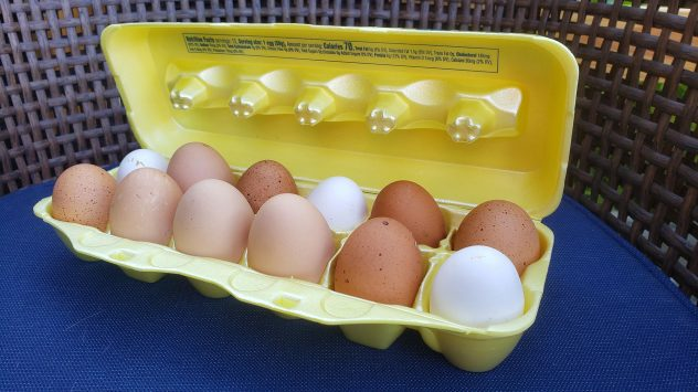 chicken eggs color