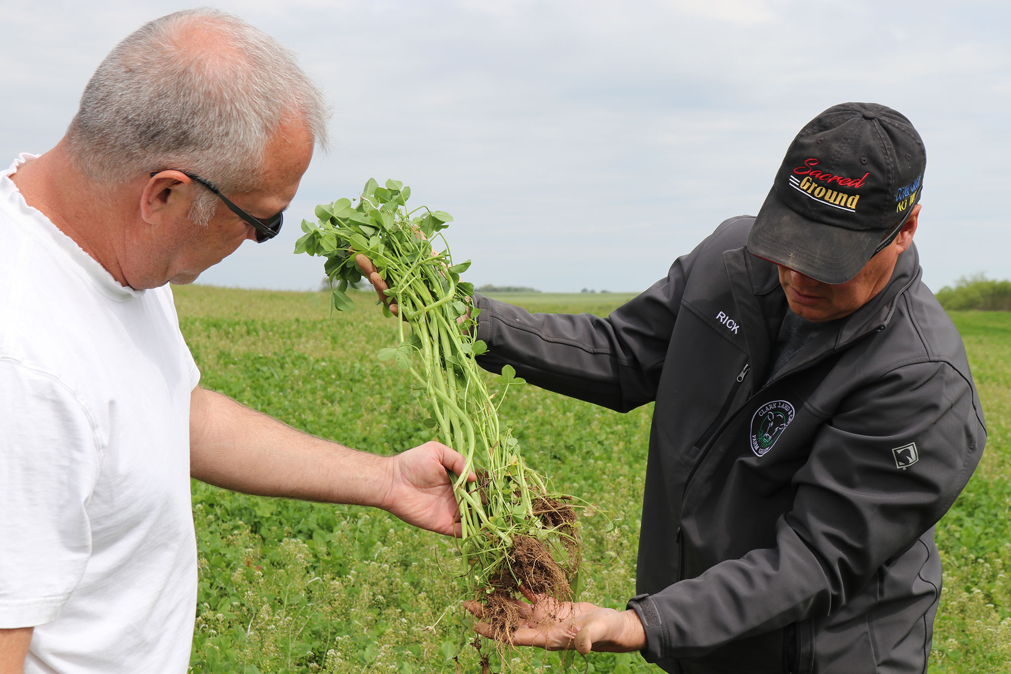 cover crop growers
