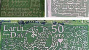 best corn mazes