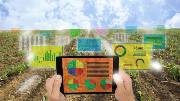 agriculture internet of things