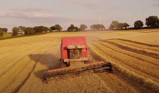 Video captures the beautiful serenity of an English harvest