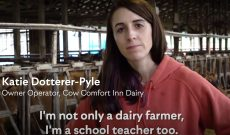Dairy video advocates for bringing full-fat milk back into schools