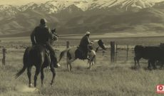 Ranchers respond to pandemic with a legacy of resilience