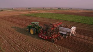 Sugarbeet-Harvest-Jerome-ID