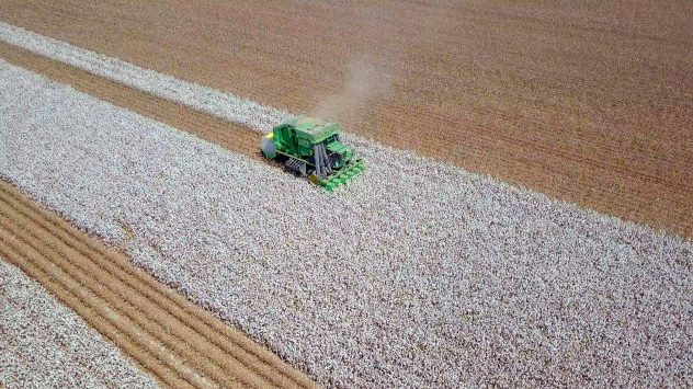 cotton-harvest-baling