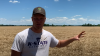 greg-peterson-glyphosate-wheat