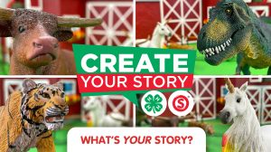 Create Your Story
