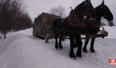 True 'horsepower' pulls UPS truck out of snow