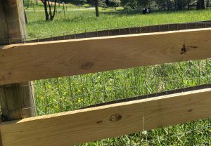 wire-board-goat-fencing