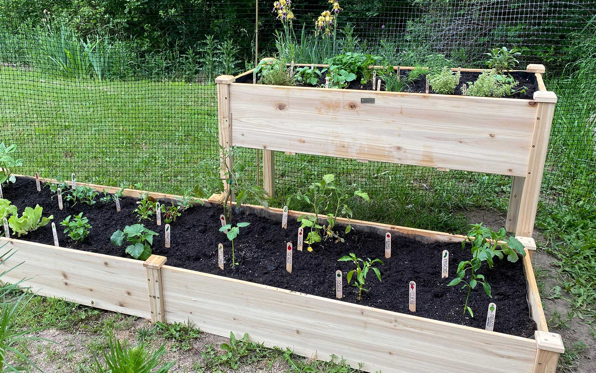 walmart-raised-bed-featured-image