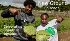 New Ground — Episode 9: Supporting our farm youth
