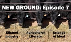 Weekly ag news updates: New Ground — Episode 7