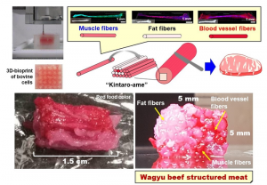 3d-cell-cultured-wagyu