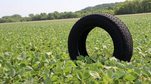 soy-tire-bridge-for-youth